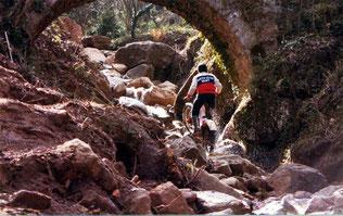 Zona Marathon - Bianya