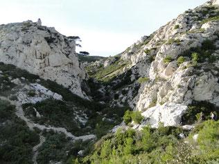Le vallon du Coucourdier