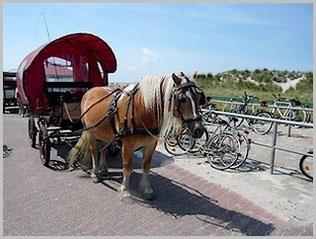 Ihr Taxi auf Baltrum