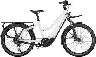 Riese und Müller Cargo e-Bike / Lastenfahrrad mit Elektromotor Multicharger Mixte