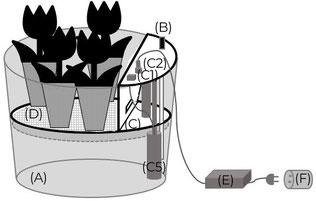 arroseur automatique plante