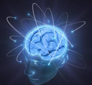 図 「脳」