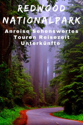 Redwood National Park Sehenswürdigkeiten
