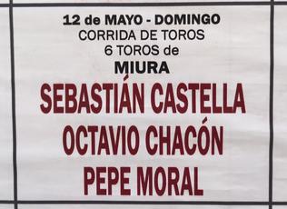 Toros de Miura pour Sébastien Castella, Octavio Chacon, Pepe Moral