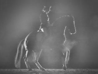 Quaterback im Nebel