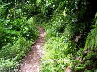 ground path