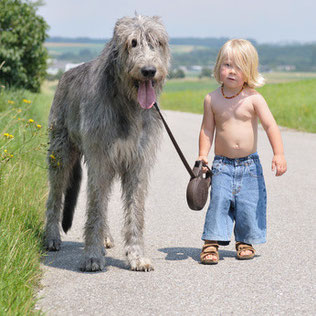 Tierliebe für groß und klein mit Pet-Fit