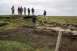 Abbildung: Burnt Mound / © Klaus Schindl