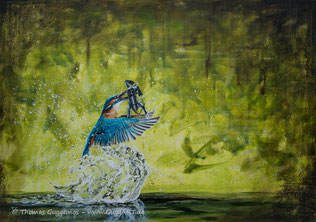 Acrylmalerei von Thomas Guggemos, Taucherkrankheit, Eisvogel mit Taucher
