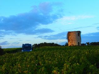 """historischer Wachturm auf dem Weingut """"Chateau de Loulin Rouge"""""""
