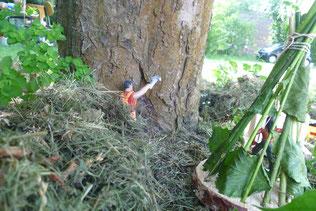 Mann fällt Baum, fühlt sich stark dabei und ist doch so klein.