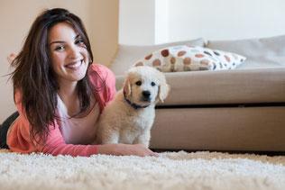 kiezen van een goede puppycursus