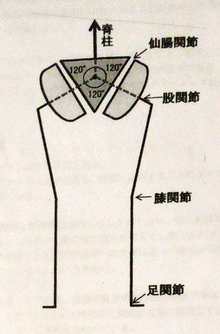 三関節原理(図が歪んでしまいました)