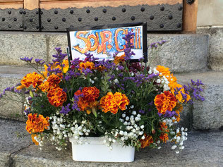 Köbi, unser Gärtner, bereitete Franz einen letzten bunten Gruss aus dem Soup&Chill-Garten.