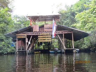 Forschungsstation Caño Palma bei Tortuguero, Costa Rica