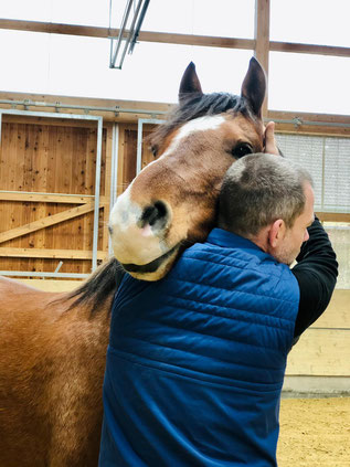 Faszien Massage Vorderhand des Pferdes