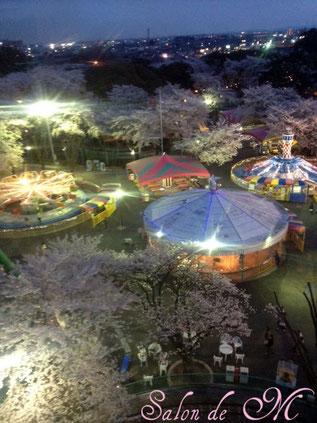 お花見 夜桜 観覧車 ウエディング