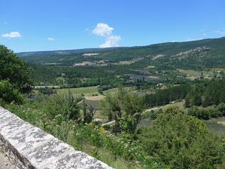 Panorama splendide de Provence avec les champs de lavandes