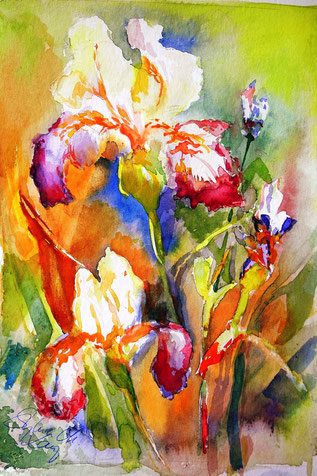 Iris - meine Lieblingsblume