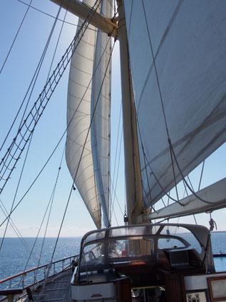ジブとステイスルを展帆して少しヒールしながらエーア島へ