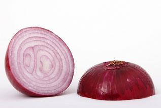 Zwiebel ist scharf und blähend