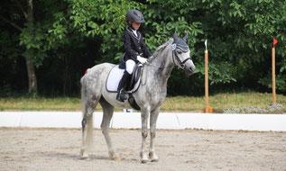 Turnierteilnahme mit Pferd von Fiedlers Drachenhof