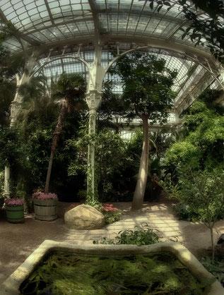 Palmenhaus.brunnen