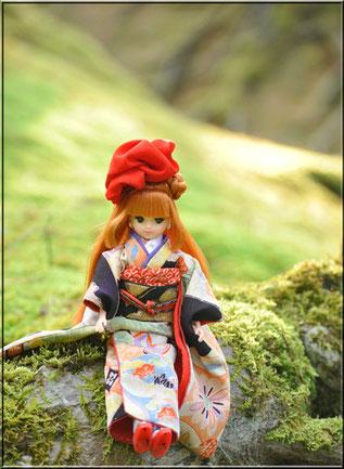 着物ブログ友達でもあるMiharuさんのきらちゃん