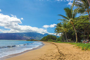 Plage de Hawaii, bkd, Pixabay