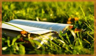 Buch in der Wiese steht für Informationen über Verpackungsmüll reduziertes Leben