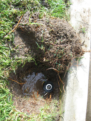 Hiring an irrigation company vs. DIY