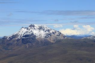 der Ceibo prägt die Landschaft von der Provinz Manabí an der Küste Ecuadors