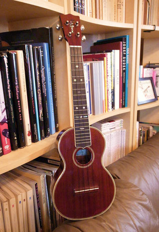 Acoustic World Ukulele
