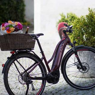 Trekking e-Bikes und Pedelecs in der e-motion e-Bike Welt in Gießen
