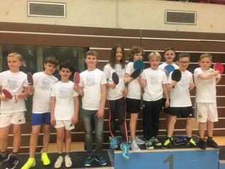 Unsere Tischtennisprofis