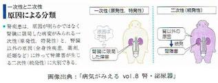 「病気がみえる vol8. 腎・泌尿器」より