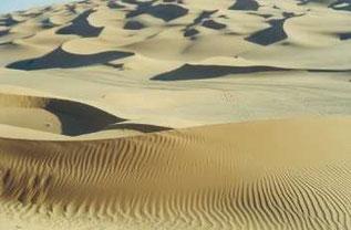 Sandwüste in der Sahara Libyens, Elian*