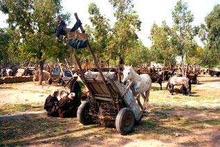 orginell der Parkplatz der Einachser und Pferde