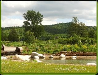 Charlotte Deppisch: Foto Grundstück 1