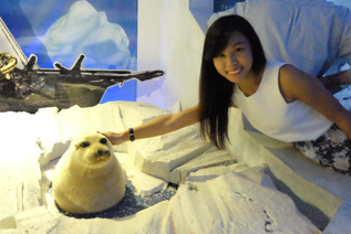 This is my pet seal