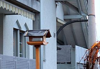 10. Januar 2016 - Architekturwirrwarr - Ob die Vögel ihr Haus auch finden?