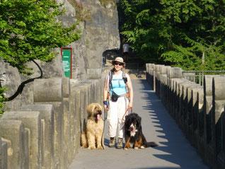 Malerweg mit Hund - Bastei (Sächsische Schweiz)