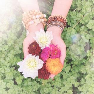 Susanna Suter Blogartikel Schöpferkraft