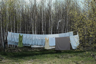Une lessive pendue sur un fil dans une forêt
