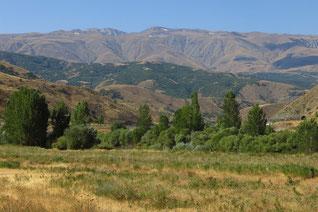 Ein Stück heiles Anatolien: das  Erzincan Ovasi