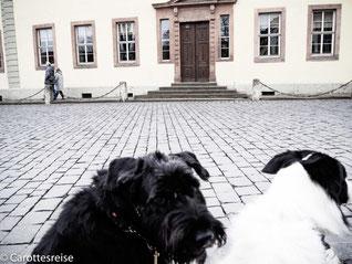 Goethes Wohnhaus am Frauenplan.