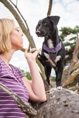 Rebecca mit ihrem Hund, der auf einem Stein steht und Pfötchen gibt