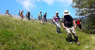 Balades estivales à la 1/2 journée montagne haute ariège babeth