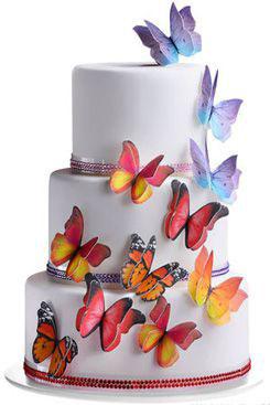 farfalle in ostia modecor