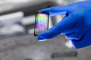 Cot I DNA, Mikroarray Anwendungen, komparative genomische Hybridisierung (CGH), Karyotyping , In-Situ Hybridisierung